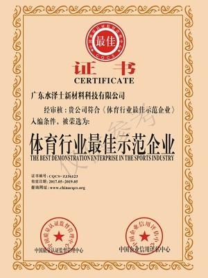 水泽士-体育行业最佳示范企业证书